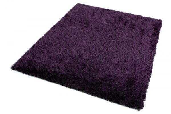 Diva-Purple_1