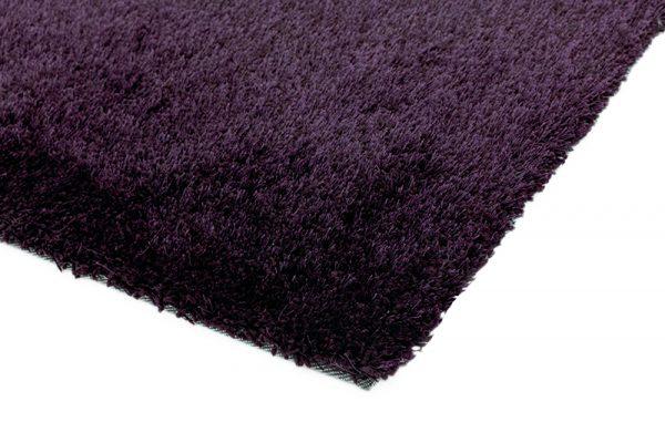 Diva-Purple_2